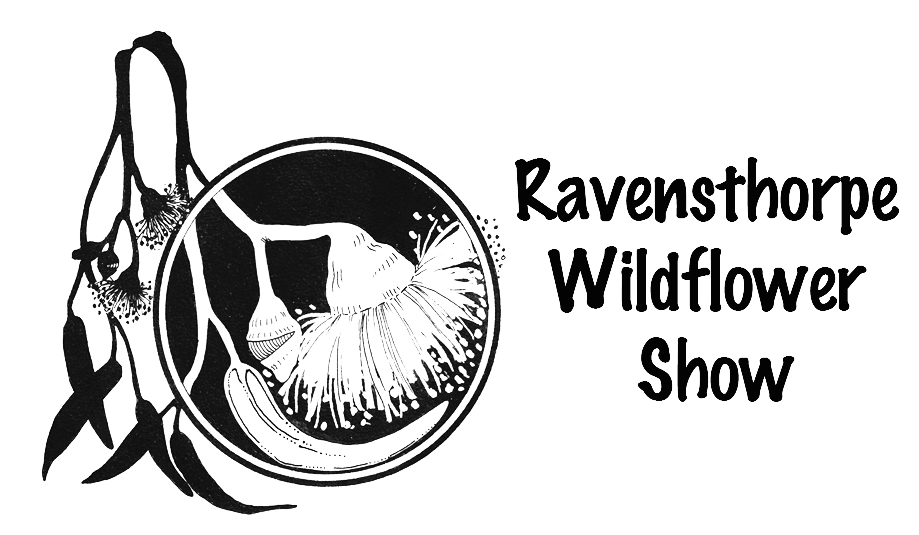 Ravensthorpe Wildflower Show