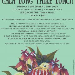 Ravensthorpe Wildflower Show Gala Long Table Lunch
