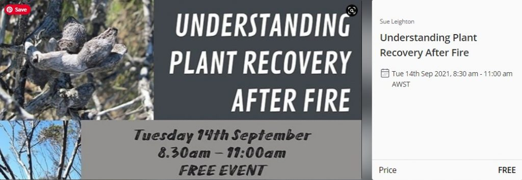 Understanding Plant Recovery After Fire